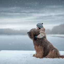 little-kids-big-dogs-photography-andy-seliverstoff-57-584fa981a2f8b__880.jpg