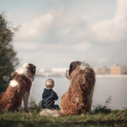 little-kids-big-dogs-photography-andy-seliverstoff-58-584fa983309ed__880.jpg