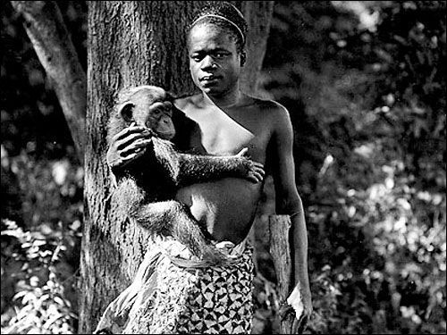 Human Zoo 5