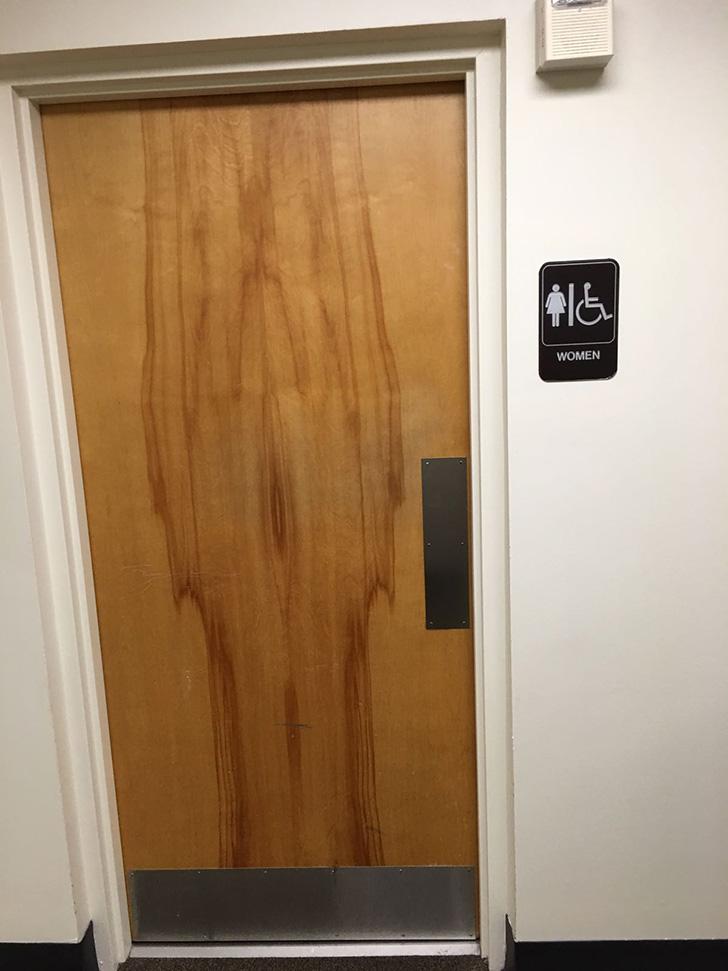a0zld-door-funny-bathroom-wood-female