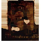 allskonar-logo2